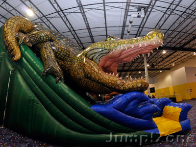Indoor Inflatable Party
